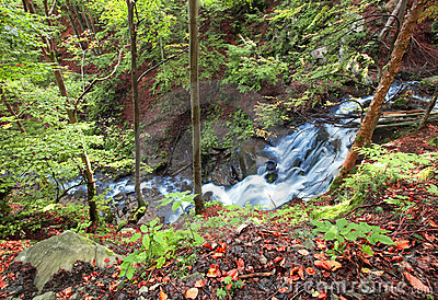 Mountain river waterfall in wild Carpathian forest