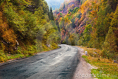 Mountain road in Parang, Romania