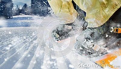 Mountain-skier legs closeup
