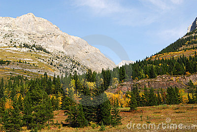 Mountain Slopes With Forests Royalty Free Stock Photos - Image: 6917338