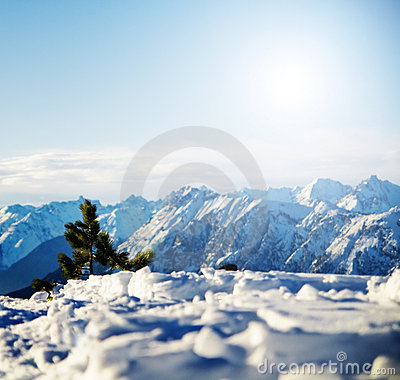 Mountain snowy winter scenery