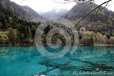 Mountain and Sparkling bright blue lake