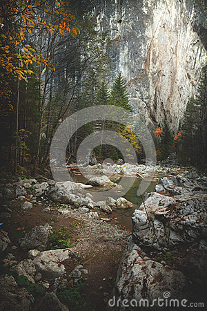 Mountain spring/river during autumn