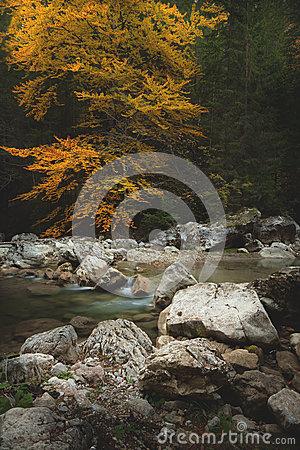 Mountain spring/river during autumn