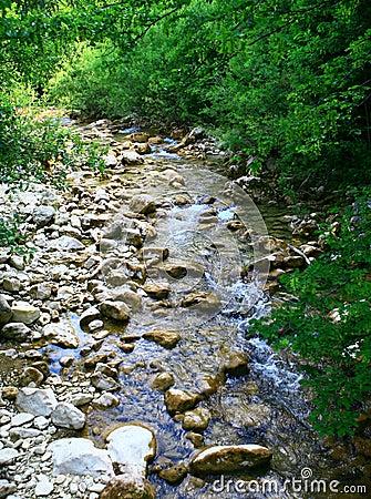 Free Mountain Stream Stock Photo - 7055890