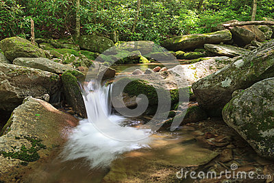 Mountain Stream Blue Ridge North Carolina