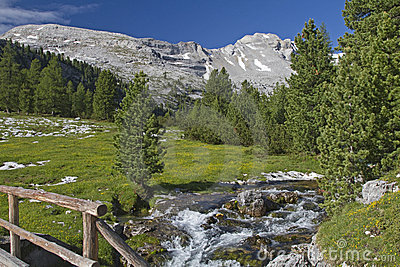 Mountain stream in the Dolomites
