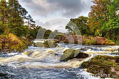 Mountain stream in Killarney