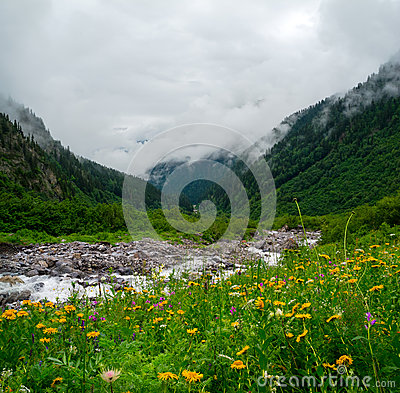 Mountain stream landscape in Svaneti