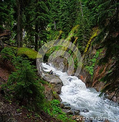 Mountain stream landscape in Svaneti