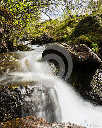 Mountain stream in Norway
