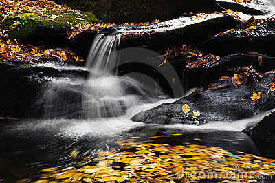 Mountain Stream and Waterfall
