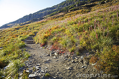Mountain Trail Stock Photo - Image: 14354340