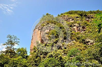 Mountain and tree, Taining, Fujian, China
