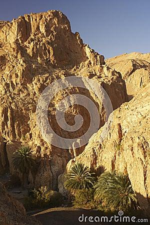 Mountain Tunisian oasis
