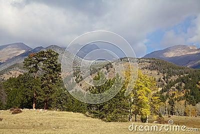 Mountain Vista in Fall