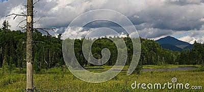 Mountain wetlands