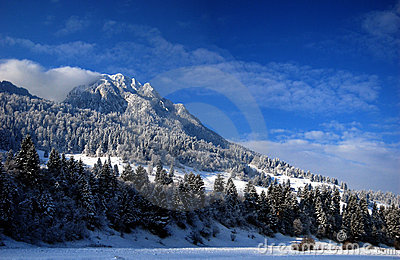 Mountain Winter Panorama
