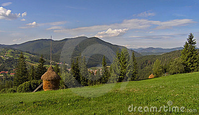 Mountainous green meadow 1