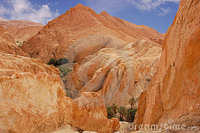 Mountainous oasis in Tunisia