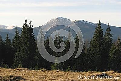 Mountainous summit.