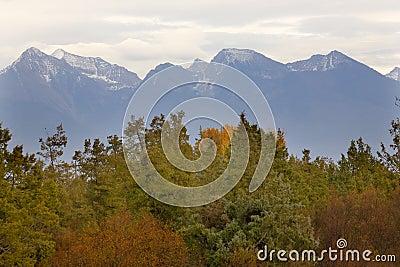 Mountains Fall Colors Montana