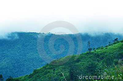 Mountains in a fog. Blue tint.