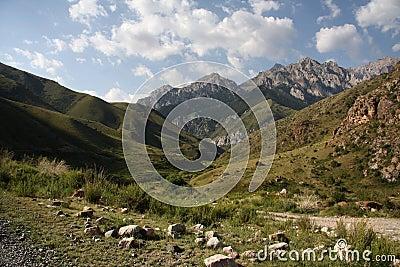 Mountains of Kyrgyzstan.