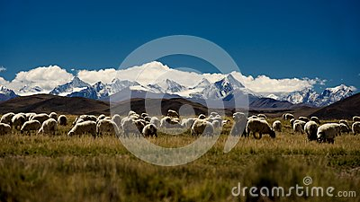 Mountains and lake in Qinghai-Tibet Plateau