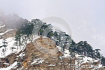 Mountains range in mist