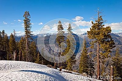 Mountains in Yosemite