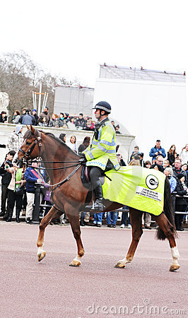 Mounted police Editorial Photo