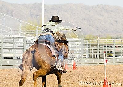 Mounted shooting 2