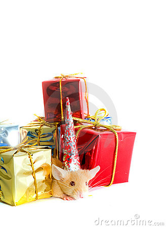 Mouse with gift boxes