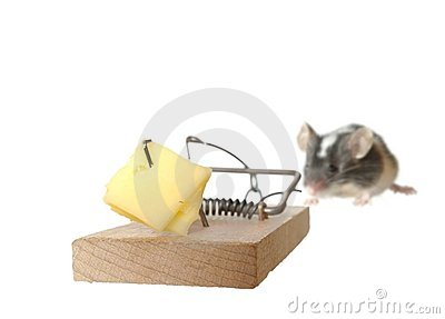 Mouse and trap