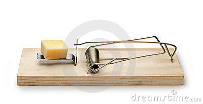 Mousetrap Cheese Trap
