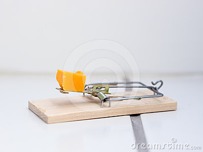 Mousetrap on floor