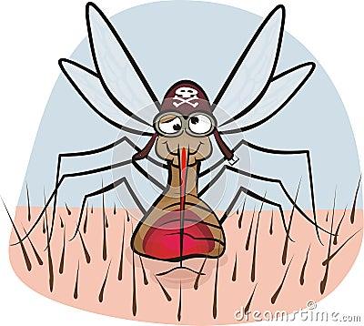 Moustique - aspiration de sang