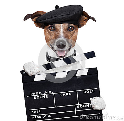 Free Movie Clapper Board Director Dog Stock Photos - 27272913