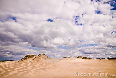 Moving dunes at the Baltic Sea