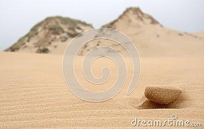 Moving dunes detail