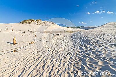 Moving dunes near Baltic Sea in Leba
