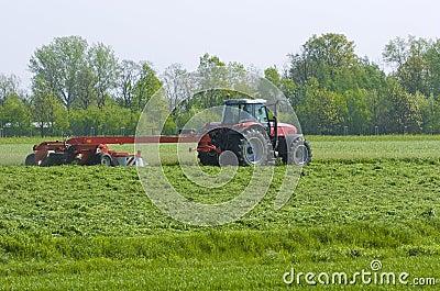 Mowing meadow