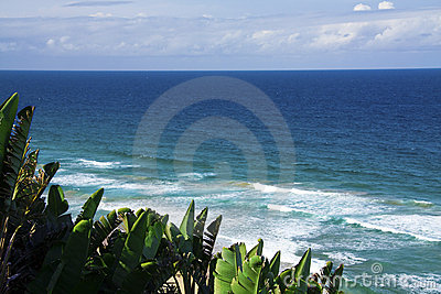 Mozambique beach 2