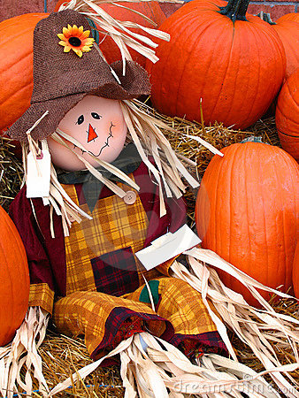 Free Mr. Scarecrow Stock Photos - 283583