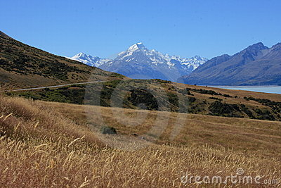 Mt Cook over farmland