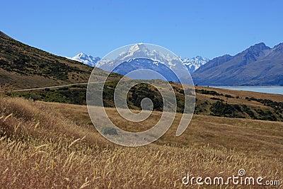 Mt Cook over farmland