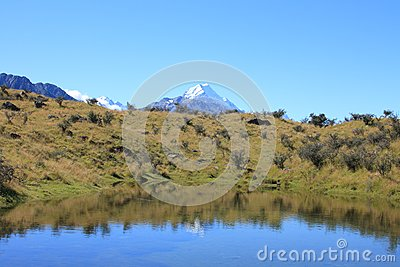 Mt Cook over Pond