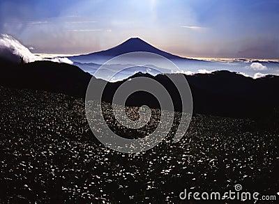 Mt fuji-398