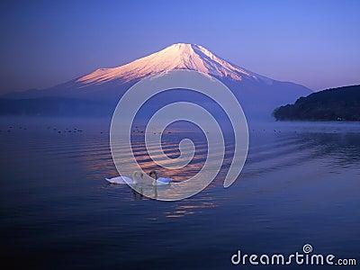 Mt fuji-401